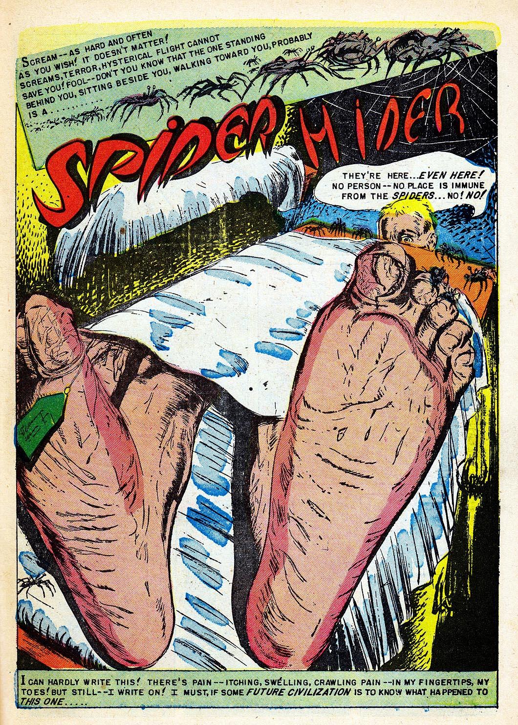 SpiderHider1