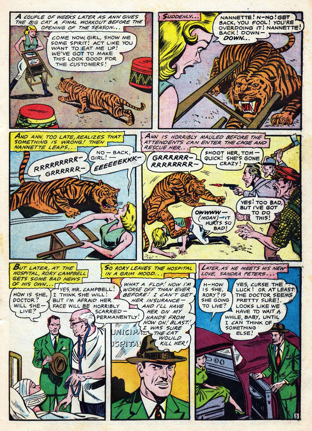 TigerTiger3