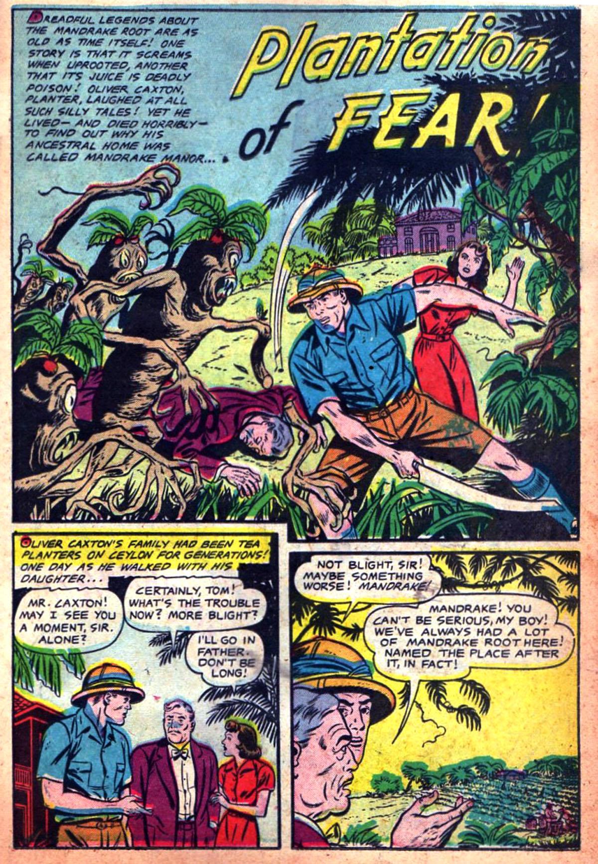 PlantationFear1