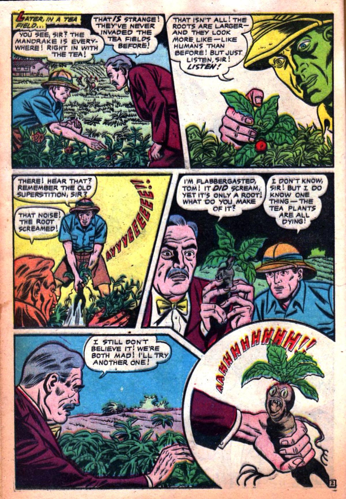 PlantationFear2